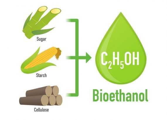 biyoetanol